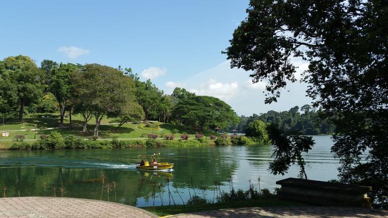Singapore MacRitchie Reservoir